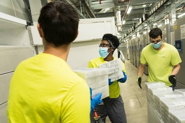 Nhân viên của Pfizer chuyển vaccine vào tủ trữ đông. Ảnh: New York Times.