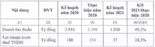 Kế hoạch kinh doanh năm 2021 của Vocarimex. Ảnh: Vocarimex
