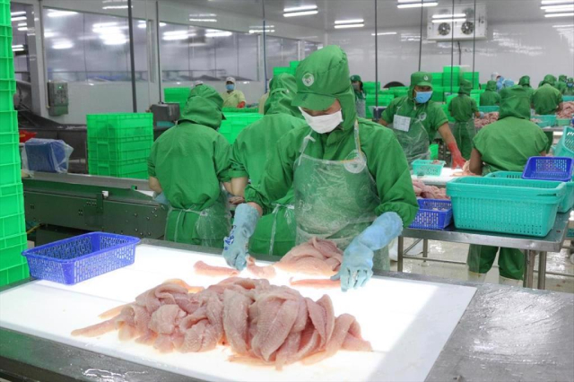 Mỹ áp thuế chống bán phá giá cá tra Việt Nam ở mức 2,39 USD/kg, trừ Vĩnh Hoàn và Nam Việt