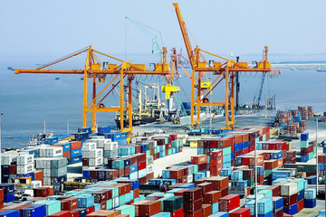 Giá cước vận tải tăng, nhiều doanh nghiệp cảng biển hưởng lợi