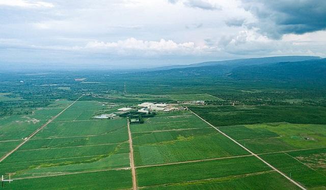 Vùng nguyên liệu mía organic của TTC Sugar tại Lào