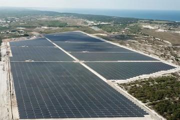 Licogi 13 chuyển nhượng dự án điện mặt trời cho Dragon Capital, dự thu về 456 tỷ đồng