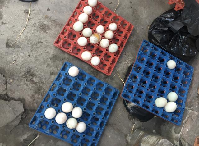 Giá trứng tại chợ ở TP HCM tăng vọt