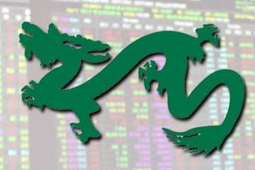 Quỹ VEIL của Dragon Capital tăng mạnh tỷ trọng tiền ngay trước nhịp điều chỉnh sâu của thị trường