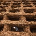 <p> Một nhân viên nghĩa trang đang đào huyệt để chôn cất những người đã tử vong vì đại dịch Covid-19 vào ngày 22/7 tại Bogor, Indonesia. Indonesia hiện là tâm dịch Covid-19 của châu Á sau Ấn Độ. Ảnh: <em>Getty Images.</em></p>