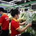 <p> Nhân viên liên tục xếp rau lên kệ, đảm bảo cung cấp đầy đủ cho khách hàng.</p>