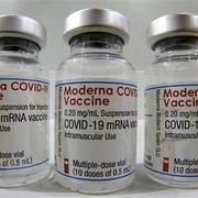 EU cho phép tiêm vaccine Covid-19 của Moderna cho trẻ vị thành niên