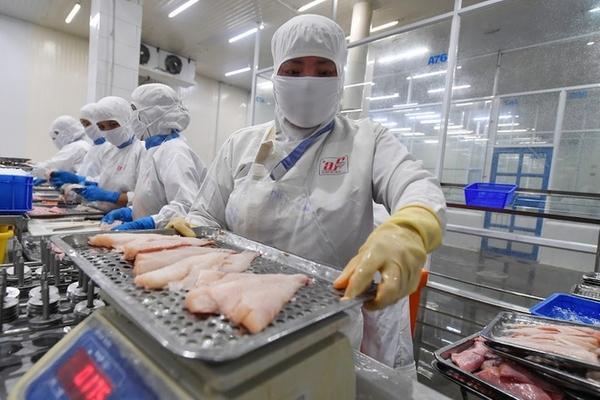 Lợi nhuận doanh nghiệp thủy sản bị bào mòn