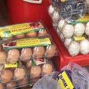 'Săn' trứng gà trong những ngày Covid-19: Giá ở Hà Nội vượt cả TP HCM
