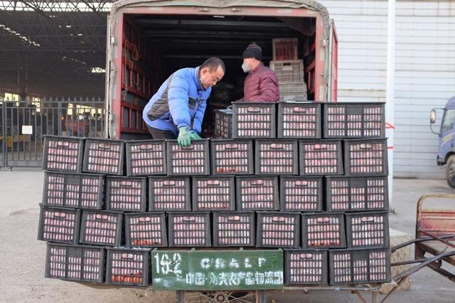 Người dân chất lương thực lên xe tải tại thành phố Thọ Quang. Ảnh: New York Times.