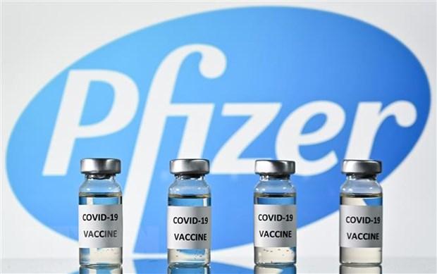Vaccine do hãng dược Pfizer nghiên cứu và sản xuất (Nguồn:TTXVN)