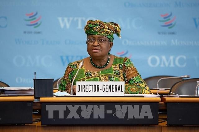 Tổng Giám đốc WTO Ngozi Okonjo-Iweala. Ảnh: THX/TTXVN
