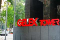 Gelex muốn chuyển toàn bộ 31% cổ phần Viglacera sang công ty con