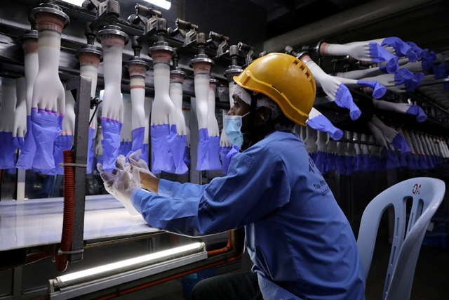 A worker inspects newly-made gloves at Top Glove factory in Shah Alam, Malaysia August 26, 2020. REUTERS/Lim Huey Teng/File Photo