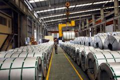 Hoa Sen phát hành 4,4 triệu cổ phiêu ESOP với giá gần bằng 1/4 thị giá