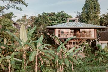 Cuộc sống tiện nghi trong ngôi gỗ 64 m2 dựng giữa ruộng vườn