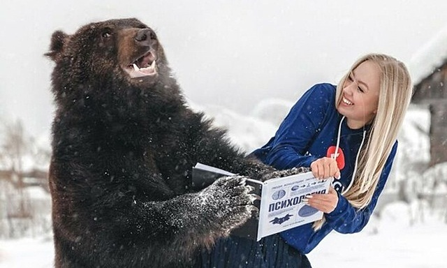 Cô gái nuôi gấu khổng lồ làm thú cưng