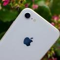 <p> Ra mắt cùng năm với iPhone X, iPhone 8 từng là một trong những smartphone được yêu thích với thiết kế nhỏ gọn và cấu hình mạnh. Sau 4 năm, thiết bị cũng không còn được bán chính hãng, chỉ còn máy qua sử dụng với giá 4-5 triệu đồng. Ảnh: <em>Digital Trends.</em></p>