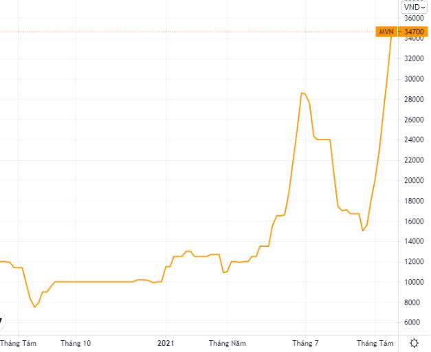 Biến động cổ phiếu MVN. Ảnh: Tradingview