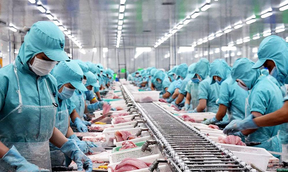 Thủy sản Việt Nam sẽ mất thị trường EU, nếu bị EC phạt thẻ đỏ