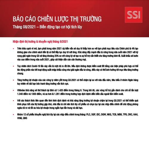SSI Research: Báo cáo chiến lược thị trường tháng 8 - Biến động tạo cơ hội tích lũy