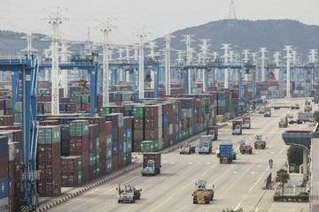 Thêm một cảng phải đóng cửa vì Covid-19, ác mộng năm ngoái của vận tải biển có thể lặp lại