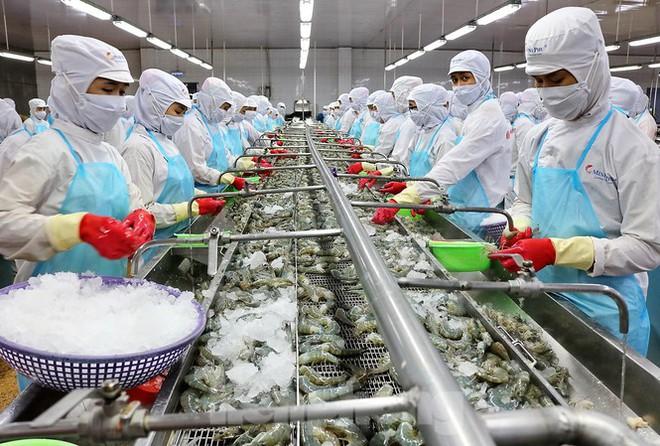 Minh Phú tăng vốn tại công ty sản xuất giống lên 200 tỷ đồng