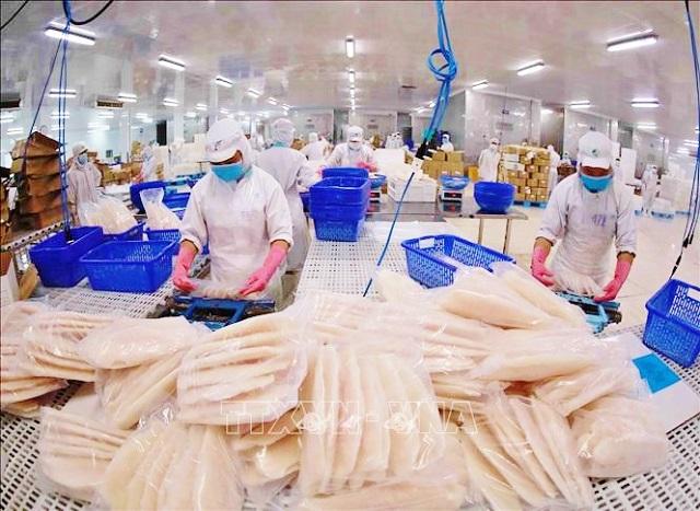 Tổng kim ngạch xuất khẩu thủy sản 6 tháng đầu năm ước đạt 4 tỷ USD. Ảnh: TTXVN