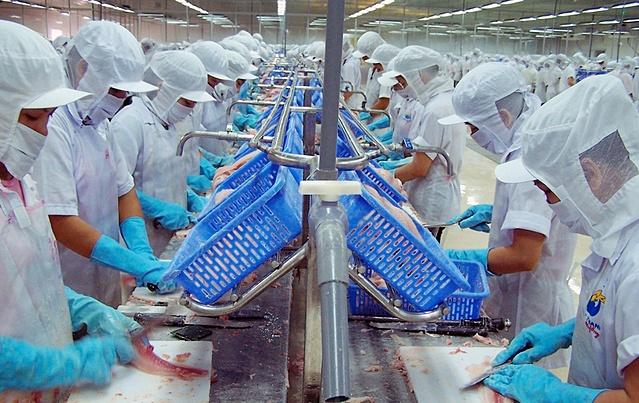 VASEP lo ngại đứt gãy chuỗi nhân lực tại các nhà máy thủy sản. Ảnh: Huỳnh Biển.