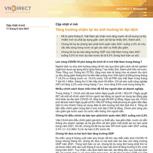 VNDirect: Cập nhật vĩ mô - Tăng trưởng chậm lại do ảnh hưởng từ đại dịch