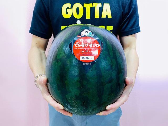 hokkaido-jumbo-densuke-waterme-7275-3691