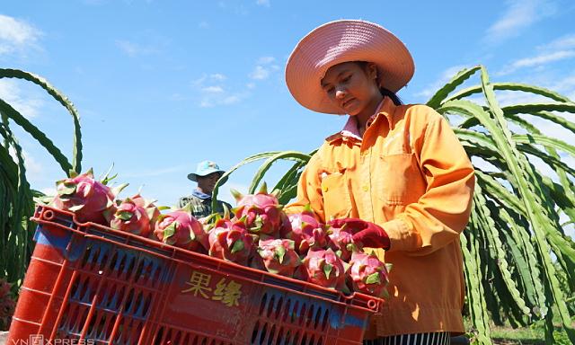 Việt Nam đề nghị Trung Quốc cho thông quan nông sản trở lại