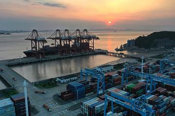 Chuỗi cung ứng vẫn rối loạn vì biến chủng Delta, giá cước tăng vọt