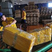 Kim ngạch xuất khẩu cao su tháng 7 tăng gần 23%