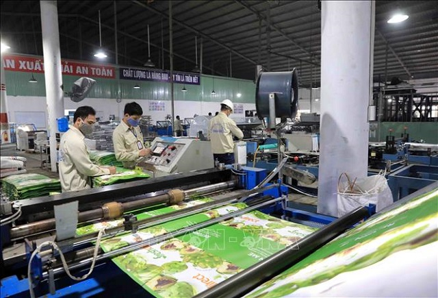 Dây chuyền sản xuất bao bì tại Thuận Đức. Ảnh: TTXVN