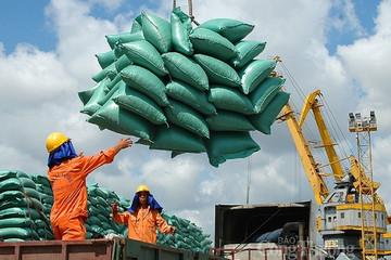 Xuất khẩu gặp khó do Tân Cảng Hiệp Phước tạm ngừng dịch vụ đóng rút gạo