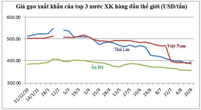 Xuất khẩu gạo Châu Á có tín hiệu hồi phục - Ảnh 1.