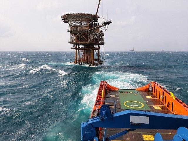 Một công ty thuộc Tân Cảng sắp chào sàn UPCoM với giá tham chiếu 32.000 đồng/cp