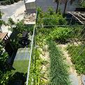 <p> Không chỉ có nhiệm vụ giữ nước, các khu vườn trên mái giúp cách nhiệt cho ngôi nhà. Qua đó, dù phục vụ chức năng ở hay làm việc, ngôi nhà hạn chế sử dụng điều hòa.</p>