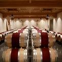 """<p> Triệu Vy nhiều lần giới thiệu về trang trại và sản phẩm rượu trên trang cá nhân với thương hiệu Chateau Monlot, phân phối tại Trung Quốc và Singapore.Ảnh:<em style=""""color:rgb(0,0,0);"""">Chateau Monlot</em></p>"""