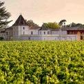 """<p class=""""Normal""""> Chateau Monlot nằm ở mạn phải của Saint Emilon - nơi có thổ nhưỡng là đất sét trên địa hình đồi dốc, đồng thời bảo đảm thoát nước tự nhiên cho đất. Đây cũnglà điểm đặc biệt của khu vực. Ảnh: <em><span>Chateau Monlot</span></em></p>"""