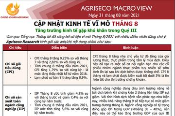 Agriseco: Cập nhật kinh tế vĩ mô tháng 8 - Tăng trưởng kinh tế gặp khó khăn trong quý III
