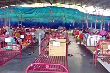 Bủa vây khó khăn, 11.000 doanh nghiệp khu vực ĐBSCL ngừng hoạt động