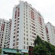 Giá bán chung cư tiếp tục tăng, TP HCM cao hơn Hà Nội