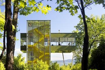 Ngôi nhà hình dấu cộng, trong suốt giữa rừng cây