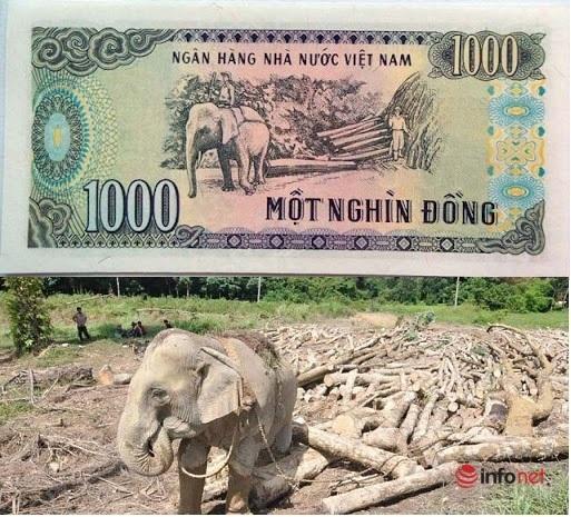 Những địa danh xuất hiện trên các đồng tiền Việt Nam - Ảnh 4.