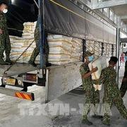 Sử dụng gần 2.200 tỷ đồng mua bù gạo dự trữ quốc gia