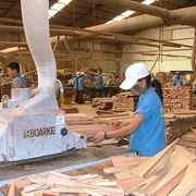 Xuất khẩu gỗ và sản phẩm gỗ sang thị trường EU tăng trưởng khả quan