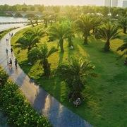 Khu đô thị 1 triệu cây xanh Ecopark lên báo Mỹ