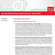 SSI Research: Cập nhật diễn biến dòng vốn đầu tư toàn cầu tháng 8/2021